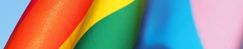 LGBTQ + Pre-Med
