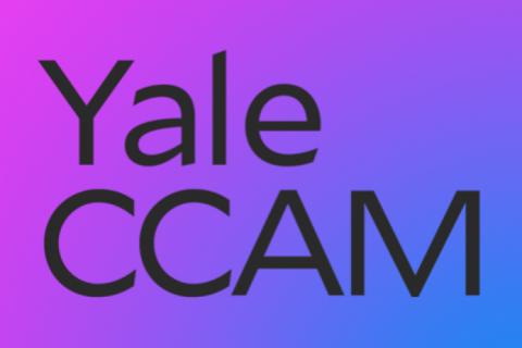ccam_logo