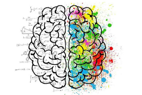 Why the Combination of Analytical Skills and Creativity Is So Valuable thumbnail image