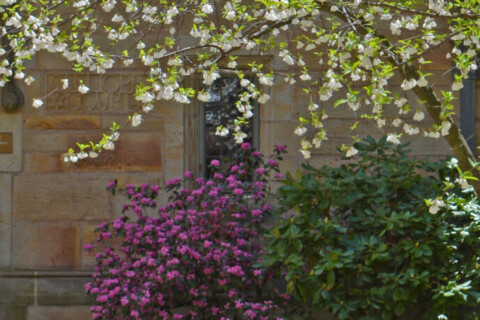 cropped-2015_05_13_13_55_Branford_Gate.jpg